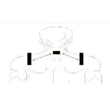 Снижение тонуса трапециевидной мышцы