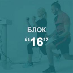 16 занятий